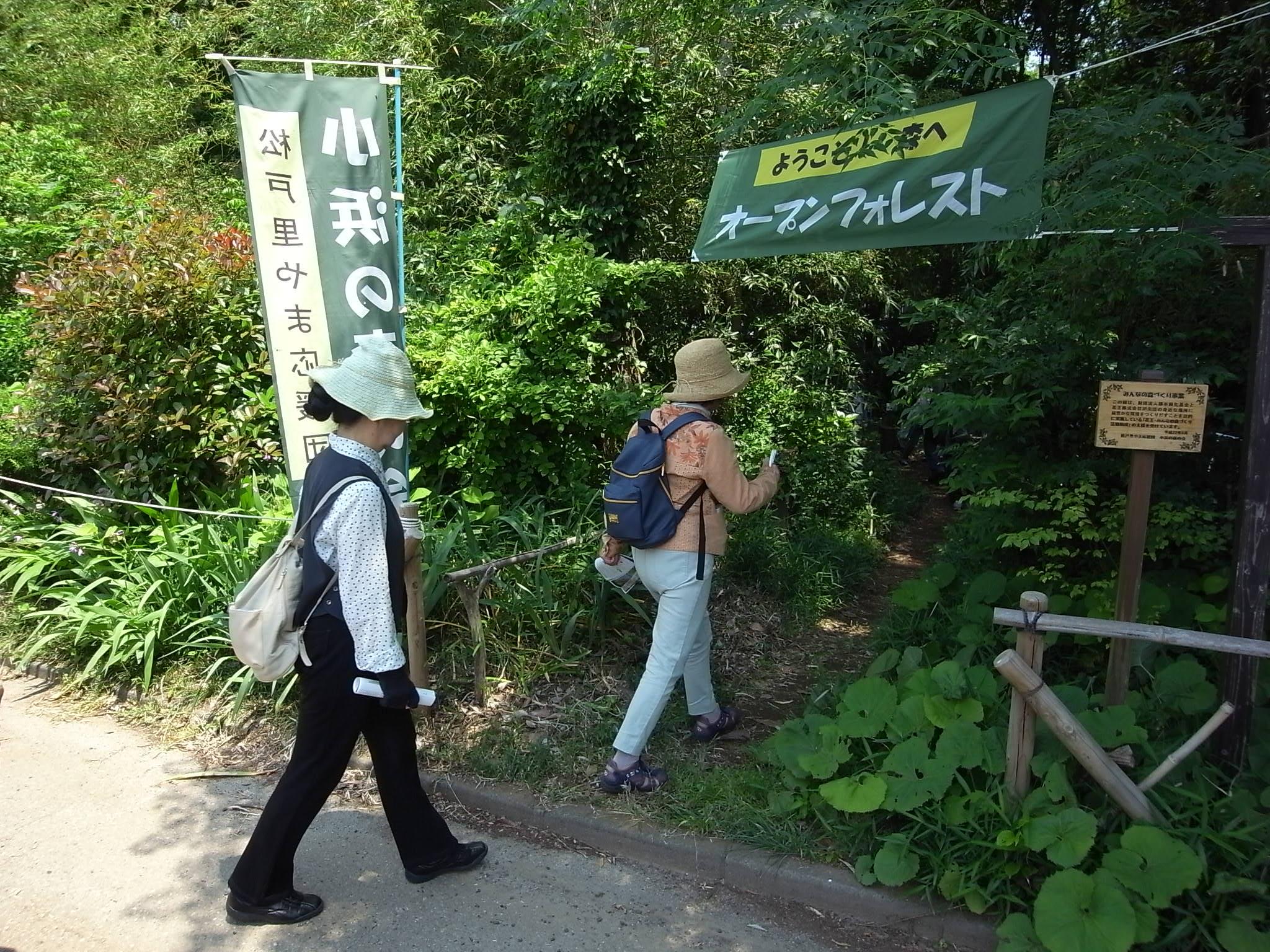 オープンフォレスト・森の入口